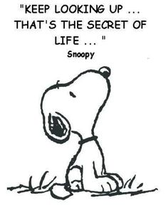 The Tao of Snoopy #Cartoon #Charles_Schulz