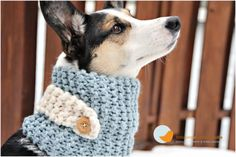 Dog scarves by Tori from Little Birdie Design Studio. Modelled by Luna from Paper & Stitch.