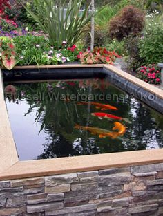 """What are Koi Ponds? Koi Ponds can be thought of as """"Swimming Pools for Koi."""" There are no rocks, gravel, or aquatic plants in a koi pond the could harm koi. Fish Ponds Backyard, Patio Pond, Outdoor Ponds, Diy Pond, Pond Landscaping, Backyard Water Feature, Outdoor Gardens, Koi Ponds, Garden Ponds"""