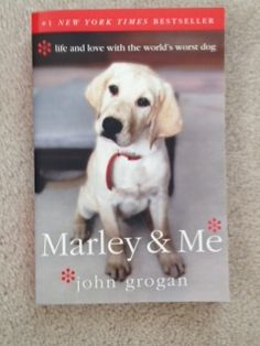 Karin has submitted this book for the July-August giving campaign. For each book photo, Bob Wagner's will donate $1.00 to the Downingtown Library. Please spread the word! #library #books #bookcover