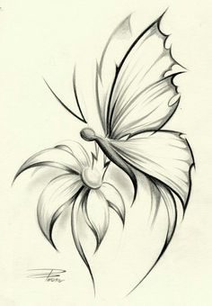 Skin Art, Drawing Sketches, Sketching, Butterfly Sketch, Simple Butterfly, Butterfly On Flower Tattoo, Butterfly Flowers, Butterfly Kisses, Butterflies