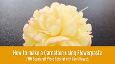 Experienced Sugarcrafter and cake decorator Carol Haycox will show you how to make a lovely sugar Carnation using FMM carnation cutters.