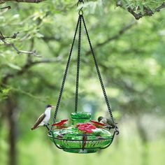 Bloom™ Perch™ Hummingbird Feeder – HummingbirdHQ.com A beautiful recycled glass hummingbird feeder with perches so birds can rest and feed longer!