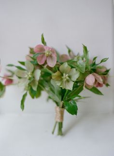 My favourite, Hellebores | Flowers by amy osaba | photo by elizabeth messina