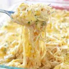 This Creamy, Cheesy Chicken Spaghetti recipe is not like any other. It is a Country Cook original and it is the best one you will ever eat! The best! Author: Brandie @ The Country Cook Recipe Type: American Total Time: Best Chicken Spaghetti Recipe, Chicken Spaghetti Casserole, White Spaghetti Recipe, Recipes With Spaghetti Noodles, Spaghetti Lasagna, Cheesy Chicken Casserole, Creamy Spaghetti, Taco Spaghetti, Spaghetti Dinner