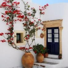 New Garden Courtyard Bougainvillea Ideas Bougainvillea, Exterior Design, Interior And Exterior, Facade Design, Spanish Style, Spanish Revival, Spanish Colonial, Back To Nature, Outdoor Spaces
