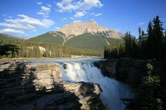 Athabasca Falls in Jasper NP, Alberta [1024x683]
