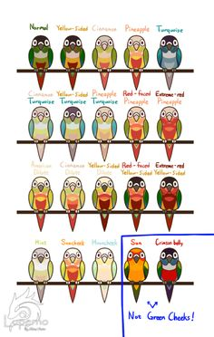 green cheek color variations - Google Search