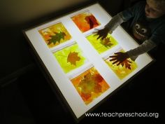 with Fall Leaves! Fall Leaves by Teach Preschool * fall leaves in plastic bags with paint and dish soap for the light tableFall Leaves by Teach Preschool * fall leaves in plastic bags with paint and dish soap for the light table Fall Preschool Activities, Teach Preschool, Classroom Activities, Preschool Crafts, Preschool Painting, Reggio, Panel Led, Licht Box, Tree Study