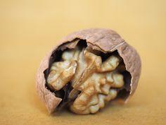skrupina-orech-vlassky orech