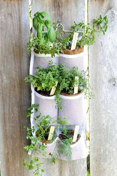 Enjoy your fresh herbs all summer long by getting a bit creative with your vertical herb garden. (Photo courtesy of Angie Holden/The Country Chic Cottage)