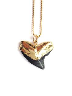 I WANT A SHARK TOOTH NECKLACE MORE THAN ANYTHING IN THE WORLD. But it doesn't have to be this one... (look on etsy)