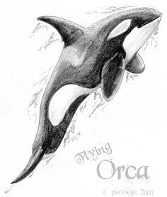Google Image Result for http://www.deviantart.com/download/46269843/Flying_Orca_by_SyKoticOrKa.png