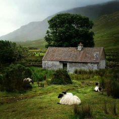 County Galway....Ireland
