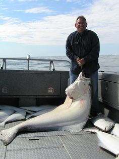 Dennis' Alaska Halibut    http://www.deniselakelodge.com/fishing-seasons-and-rates/alaska-fishing-trip-packages/corporate-packages/