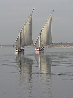"Egypt. ""Feluccas on the Nile River"""