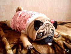 pug made from pantyhose Nylons, Animal Sculptures, Felt Dolls, Soft Sculpture, Sewing For Kids, Sloth, Needle Felting, Diy Tutorial, French Bulldog