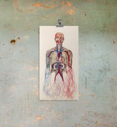 Anatomy Art. Embroidered Anatomical Art. by FabulousCatPapers