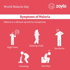 World Malaria Day!