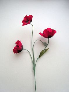 Red Silk Poppy with three heads