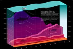 60+ Beautiful Examples of Well-Designed Infographics - DJDESIGNERLAB