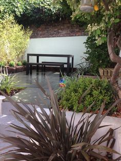 Courtyard garden in Brighton with Kotah blue paved terrace, fixed timber bench, feature wall and evergreen planting