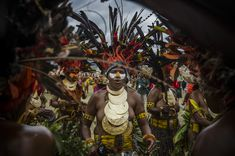 Tribes in the Goroka Show, Papua New Guinea – Copyright Fabien Astre