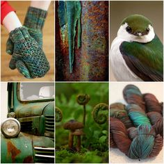 Mood Board Monday - Forest Floor by Tanis Fiber Arts Tanis Fiber Arts, Forest Floor, Colour Board, Color Theory, Jewel Tones, Art Blog, Colorful Interiors, Shades Of Blue, Rainbow Colors