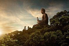 Hong Kong Big Buddha Wallpaper #4210 Desktop Computer,Gadget And ...
