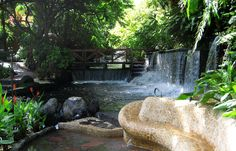 Tabacon Hot Springs and Resort