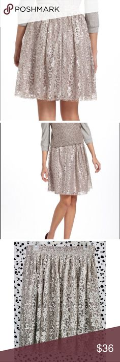 HD in Paris Metallic Silver Lace Skirt Anthro How cute is this skirt? The beautiful metallic lace over the dreamy muted lavender is what dreams are made of! This skirt is in wonderful preloved condition and is ready for its fabulous new home!  If you have any questions please feel free to ask! xoxo Lost Treasures Resale 💕  ✨We offer amazing discounts on bundles!✨  *Measurements are available upon request* Anthropologie Skirts