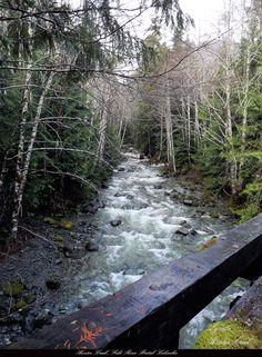Hunter  Creek, Gold River  BC Gold River, Columbia River, Vancouver Island, British Columbia, Garden Bridge, Rivers, Outdoor Structures, Nature, Pictures