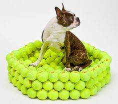 Re-Imagining Your Waste {Tennis Balls}  My dog would be dying to play with the balls! Diy Dog Bed, Dog Beds, Unique Sofas, Mid Century Modern Sofa, Pet Gear, Sofa Styling, Dreams Beds, Leather Sectional Sofas, Dog Rooms