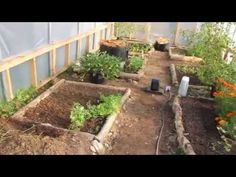 Our Heated Winter Greenhouse in Canada - YouTube