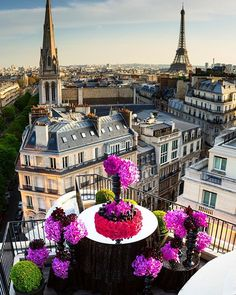ONE WORD - J'ADORE - #Paris - #Beautiful - #Contrast - #TeamLeatham - #Flowers - @fsparis ❤️❤️- City of Lights Baby -