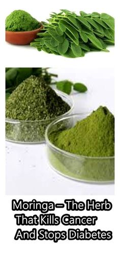Moringa-The Herb That kills cancer and stops Diabetes