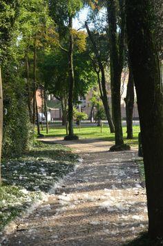 Passeio Público em Curitiba - Curitiba além dos principais pontos turísticos