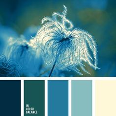 Moody color palette