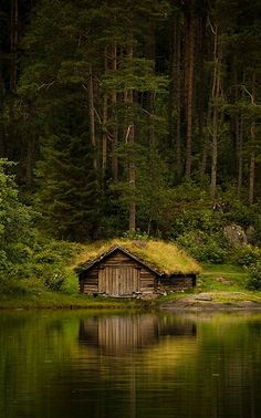 Grass Roofed Boathouse, Norway roof, old boats, lake houses, cottag, little cabin, dream, forest, place, norway