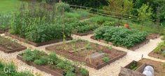 Every year we get inquiries from people who are a little bewildered by the complexity of planning their first vegetable garden and don't know where to start. Some are looking for a 'quick fix' – some way to magically come up with the perfect plan for their garden. Others are prepared to spend time but find the plethora of possible combinations of plants and layouts confusing. With that in mind, here's our best advice in the form of principles to follow when producing a good plan for a new…