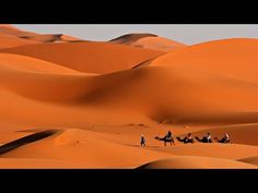 Dahbi Morocco Tours invites you to join our breathtaking Morocco Desert Tours to experience the camels in the desert and spend the night in nomad tents. Desert Tour, Relaxing Music, Dance Moves, Art Music, Morocco, Music Videos, Tours, Entertaining, In This Moment