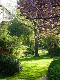 Notting Hill, London. The back of our garden connects to a private park. Typical of the area.