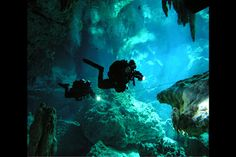 Freshwater sinkhole, known as a cenote, in Mexico's Yucatan Peninsula