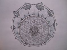 Discover Flower Of Life Apparel Limited Edition T-Shirt, a custom product made just for you by Teespring. - The Flower of Life is A sacred symbol that has. Flower Of Life Tattoo, Flower Of Life Symbol, Bonsai Tree Tattoos, Pine Tree Tattoo, Seed Of Life, Tattoo Outline, Mandala Tattoo, Lotus Tattoo, Mandala Drawing