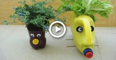 2 DIY Plastic bottle flower pot you can make at home Plastic Bottle Planter, Plastic Bottle Flowers, Recycled Glass Bottles, Plastic Bottle Crafts, Recycle Plastic Bottles, Painted Jars, Diy Home Crafts, Plant Holders, Diy Design