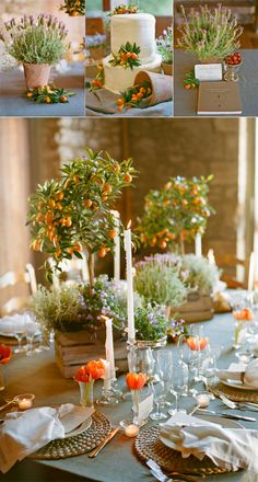 Orange tree centerpieces. Love the idea of a fragrant plant like lavender next to it. Also love the individual tulips at each setting.