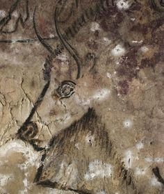 Magdalenian Era Cave Painting of Bison -- Grotte de Niaux, France -- Approximately years old. (I have the poster of this). Art Pariétal, Paleolithic Art, Art Ancien, Stone Age, Aboriginal Art, Ancient Artifacts, Ancient Civilizations, Oeuvre D'art, Rock Art