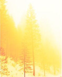 yellow light - nostalgia