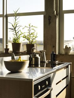 White Countertops St Patrick And Green Plants On Pinterest