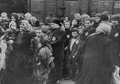 Jewish women and children from Subcarpathian Rus await selection on the ramp at Auschwitz-Birkenau.